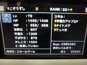 P1040004
