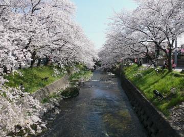 Gojogawa_in_iwakura_05